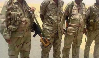 من هو الشهيد العميد علي هزاع الصيادي أركان حرب اللواء الاول قوات خاصة محور حرض(معلومات اولية)