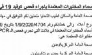 رسمياً.. السماح بدخول المسافرين الى السعودية عبر منفذ الوديعة بحضرموت ابتداء من اليوم الاثنين 21 سبتمبر