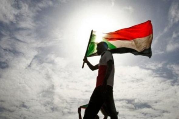 دولة الإمارات تنجح في الوصول للسلام في السودان عبر لم شمل الفرقاء